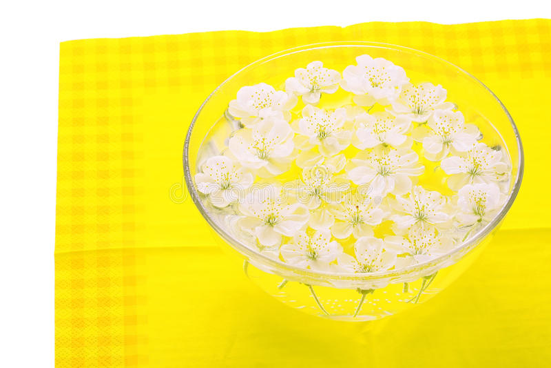 czereśniowi kwiaty obrazy stock