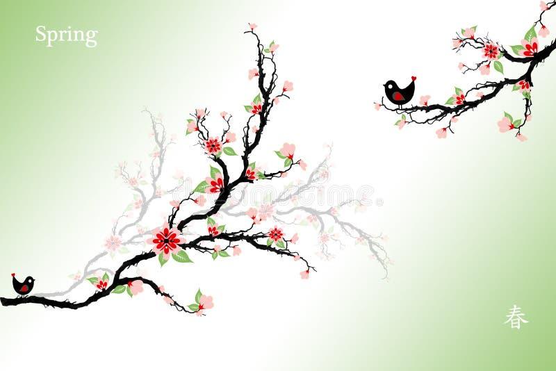 Czereśniowi okwitnięcia Drzewni royalty ilustracja