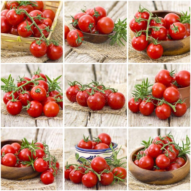 Czereśniowi pomidory - kolaż zdjęcia royalty free
