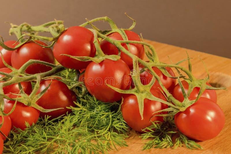 Czereśniowi pomidory na koperze zdjęcia royalty free