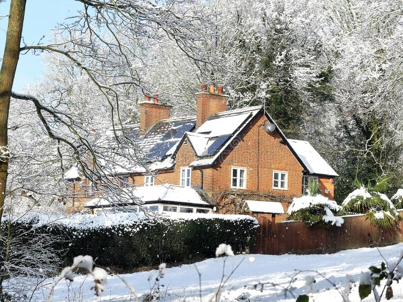 Czereśniowy drzewo Dell, Chorleywood błonie, Chorleywood w zima śniegu obraz stock