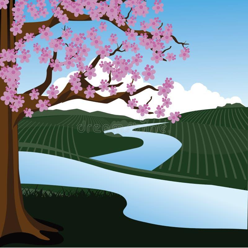 Czereśniowy drzewo w wiosna krajobrazie ilustracja wektor