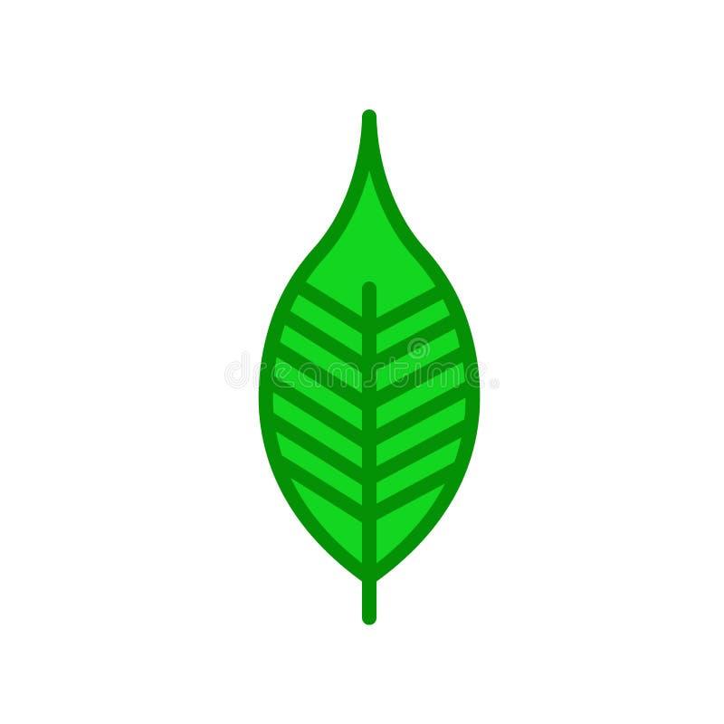 Czereśniowy liść ikony wektoru znak i symbol odizolowywający na białym backgr royalty ilustracja