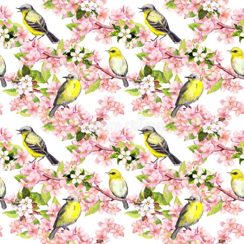 Czereśniowy okwitnięcie - jabłko, Sakura kwitnie, ptaki bezszwowy kwiecisty wzoru akwarela ilustracja wektor