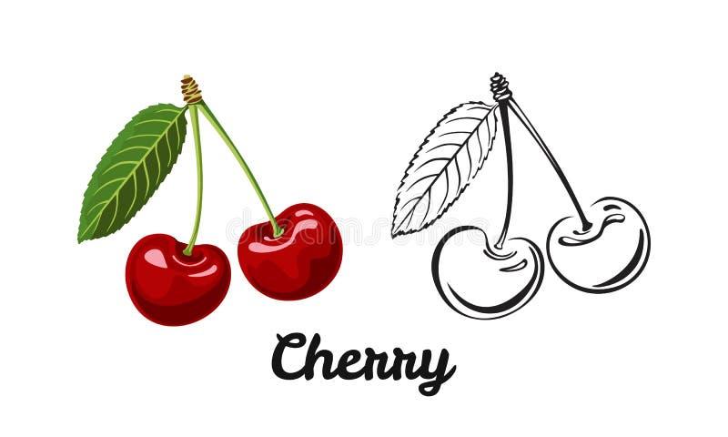 Czere?niowy ikona set Kolor ilustracja czerwona dojrzała sylwetka i jagoda ilustracji