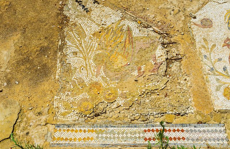 Czerep antykwarska Romańska mozaika, Carthage, Tunezja obrazy stock