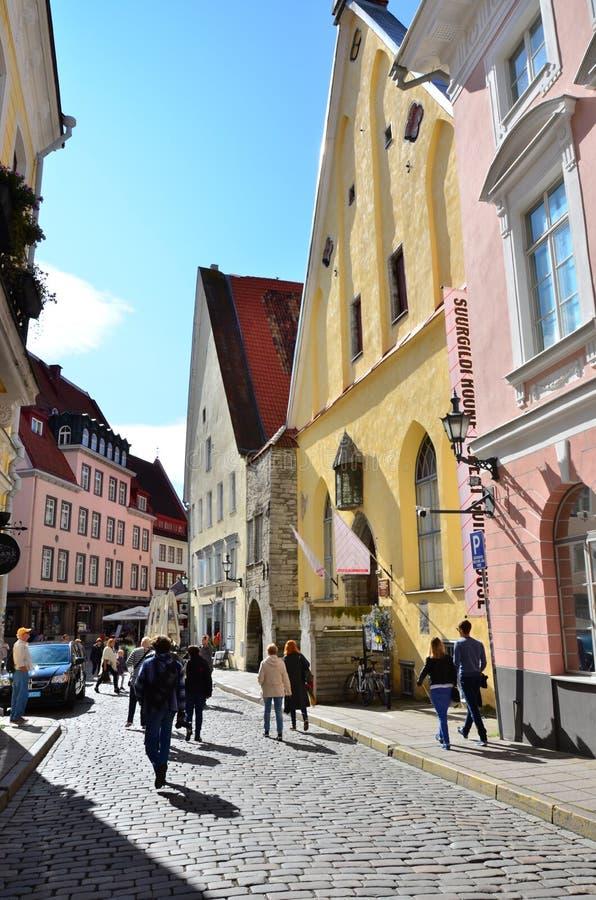Czerep dom Wielki cech w starym Tallinn fotografia royalty free