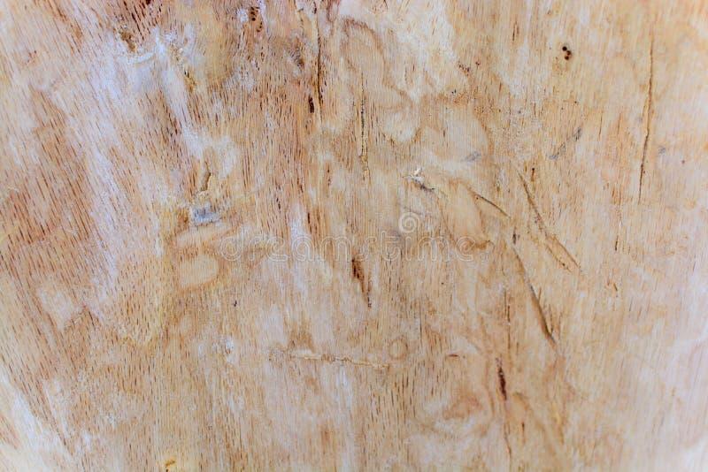 Czerep drewniany panelu twarde drzewo zdjęcia stock