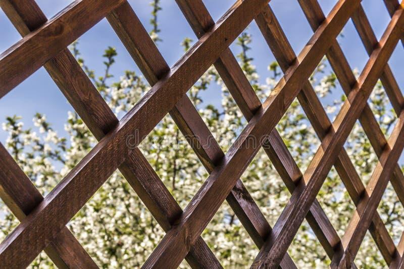 Czerep drewniany summerhouse obraz royalty free