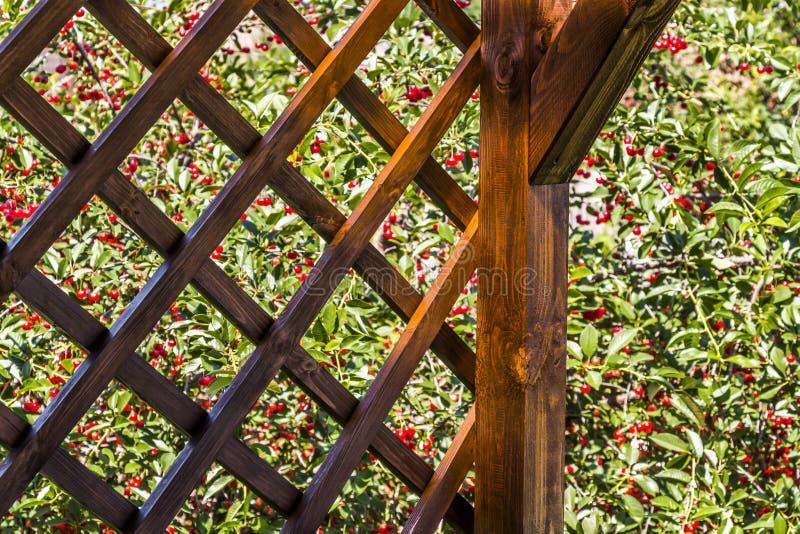 Czerep drewniany summerhouse zdjęcie stock
