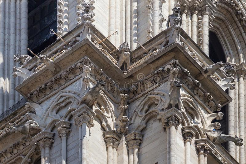 Czerep fasada notre-dame de paris obraz royalty free