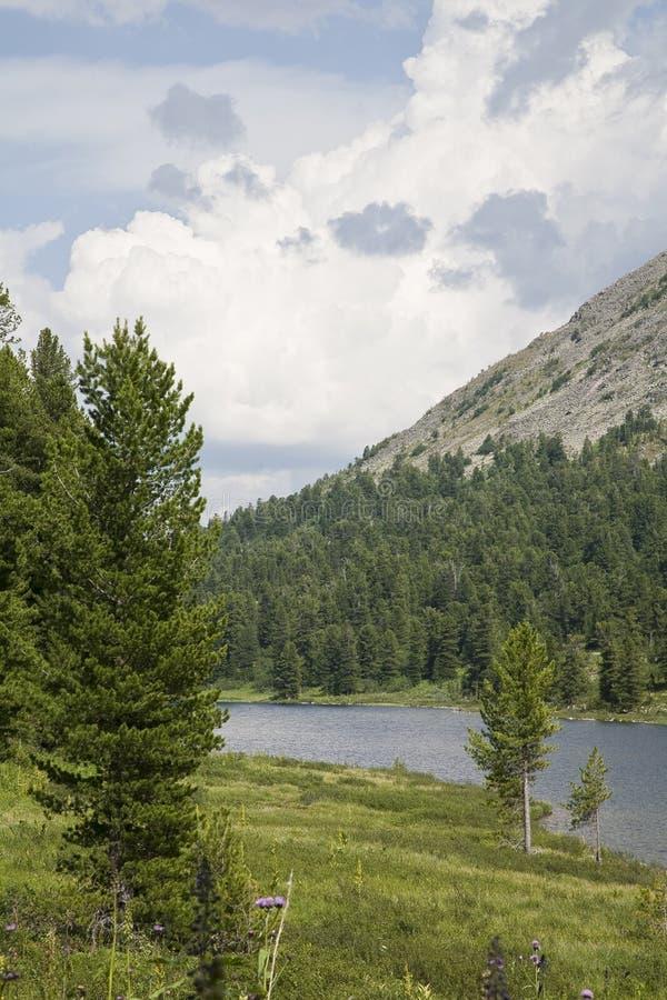 czerepu jeziora góra obraz royalty free