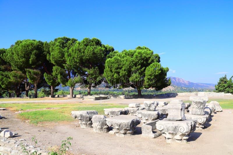 Czerepy antyczne kolumny przy archeologicznym miejscem, Selcuk, Ephesus, Turcja fotografia stock