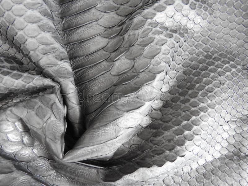 Czerni ważącą pyton skórę, czarną dla tekstury fotografia royalty free