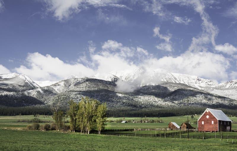 Czerwa śnieg, Wallowa góry zdjęcia royalty free