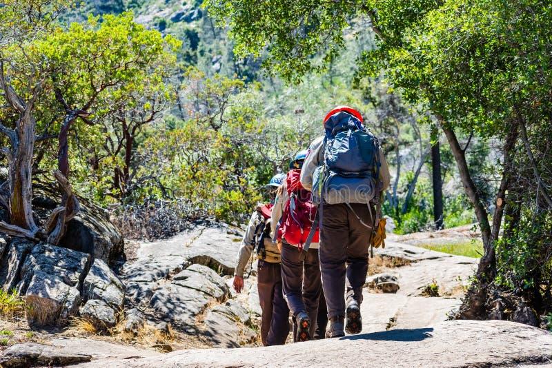 Czerwiec 26, 2019 Yosemite park narodowy, konserwacja korpusów CCC członkowie wycieczkuje w Hetch Hetchy rezerwuarze/CA, usa/- Ka fotografia royalty free