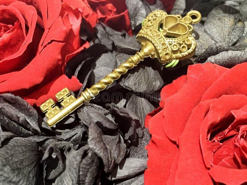 czerwieni i czerni roseï ¼ Œa złoty klucz fotografia royalty free