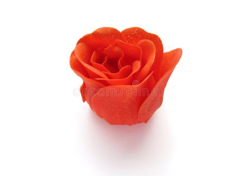 czerwieni róży mydło obraz royalty free