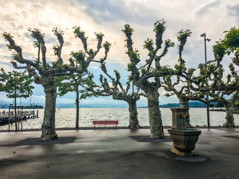 Czerwona ławka na jeziorze przeciw zmierzchu tłu obraz royalty free