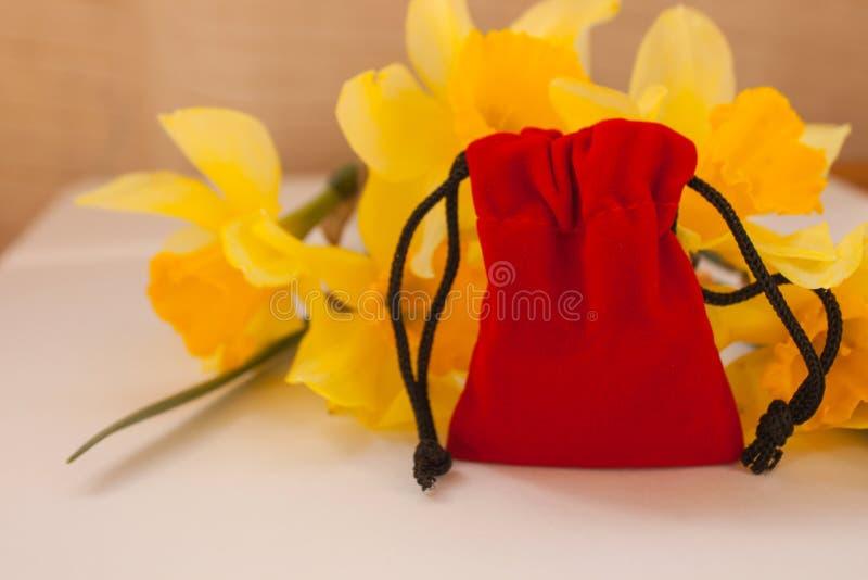 Czerwona aksamitna kieszonka z kolorem żółtym kwitnie na białym tle, kopii przestrzeń fotografia stock