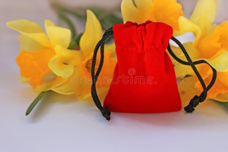 Czerwona aksamitna kieszonka z kolorem żółtym kwitnie na białym tle odizolowywającym obrazy stock