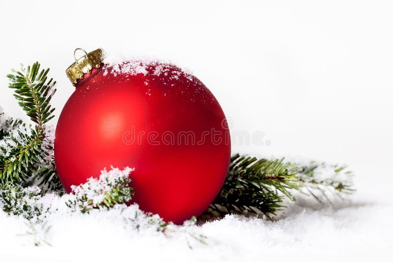 Czerwona boże narodzenie ornamentu śniegu sosna fotografia royalty free