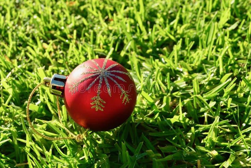 Czerwona Bożenarodzeniowa balowa dekoracja na zielonej trawy tła bożych narodzeniach w Lipu zdjęcia royalty free