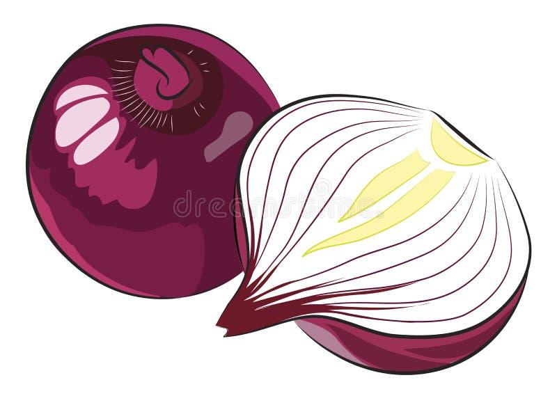 Czerwona cebula ilustracja wektor