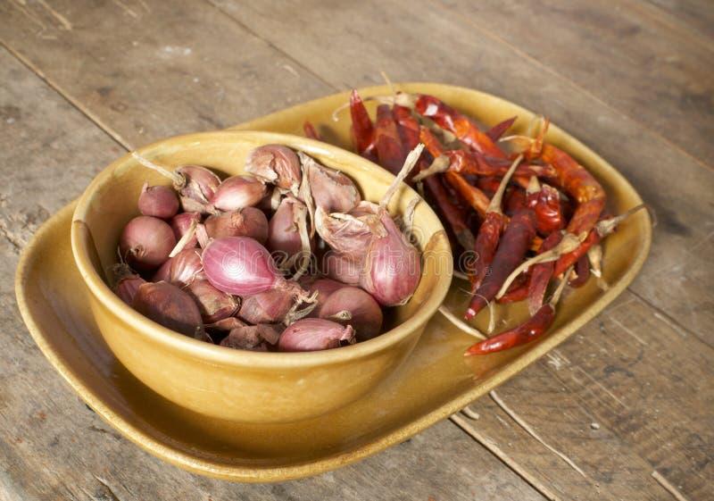 Czerwona cebula i wysuszony chili fotografia stock