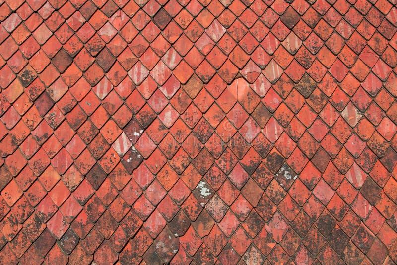 Czerwona dekarstwo płytek tekstura obrazy royalty free