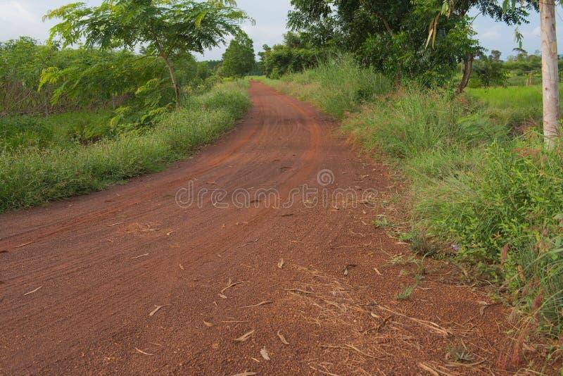 Czerwona droga z samochód opony drukiem Dla tła obrazy royalty free