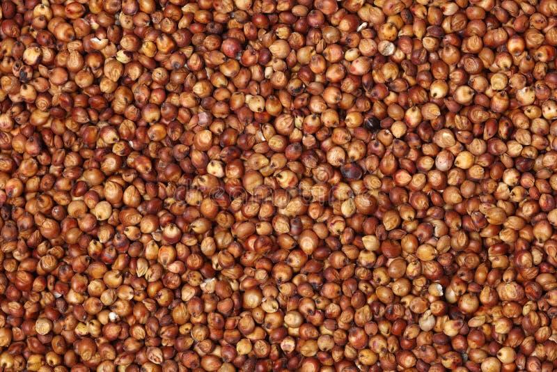 Czerwona durra sia stosownego zdjęcie stock