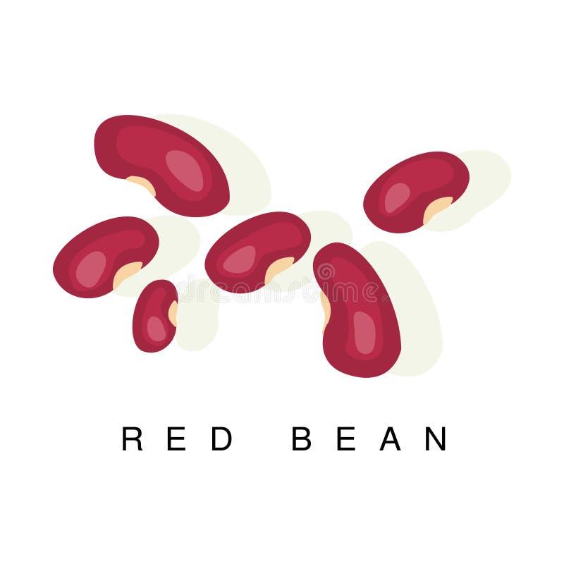 Czerwona fasola, Infographic ilustracja Z Realistyczną pelengów Legumes rośliną I Swój imię, ilustracji
