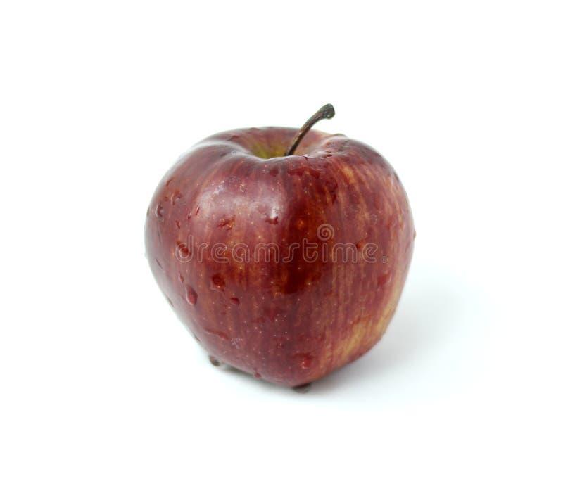 Czerwona jabłczana owoc nad białym tłem fotografia stock