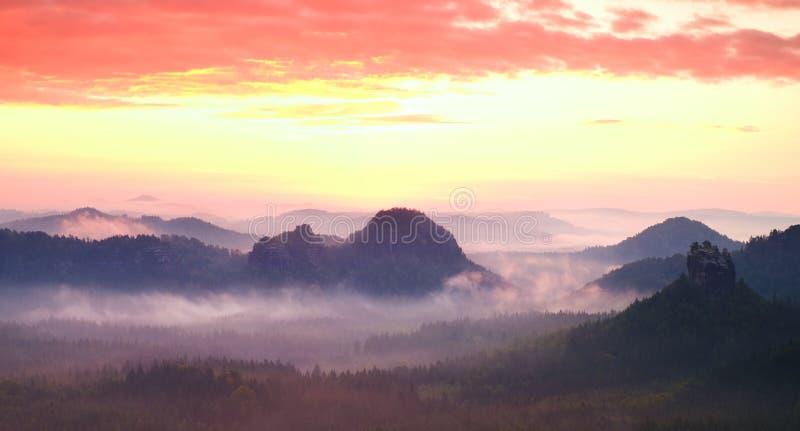 Czerwona mglista krajobrazowa panorama w górach Fantastyczny marzycielski wschód słońca na skalistych górach Mgłowa mglista dolin obraz royalty free