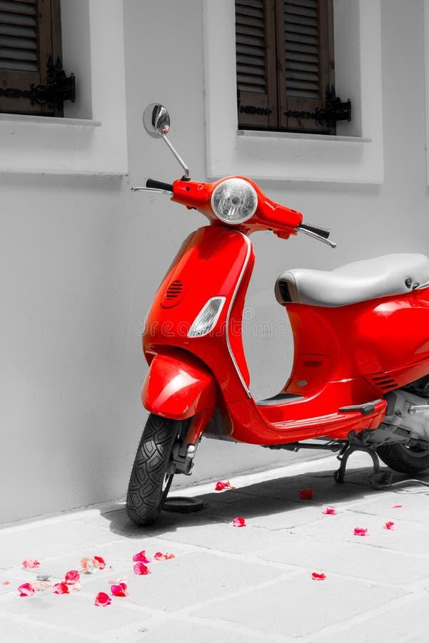 Czerwona motorowa hulajnoga i różani płatki obraz royalty free