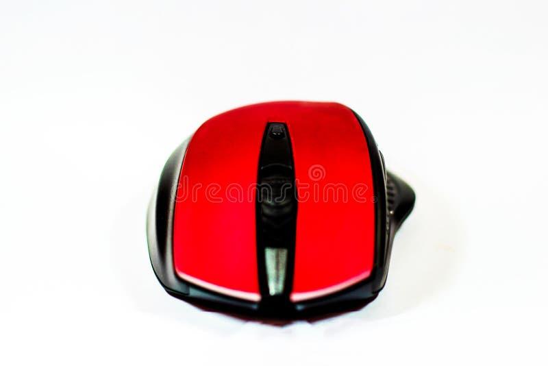 Czerwona mysz obraz stock