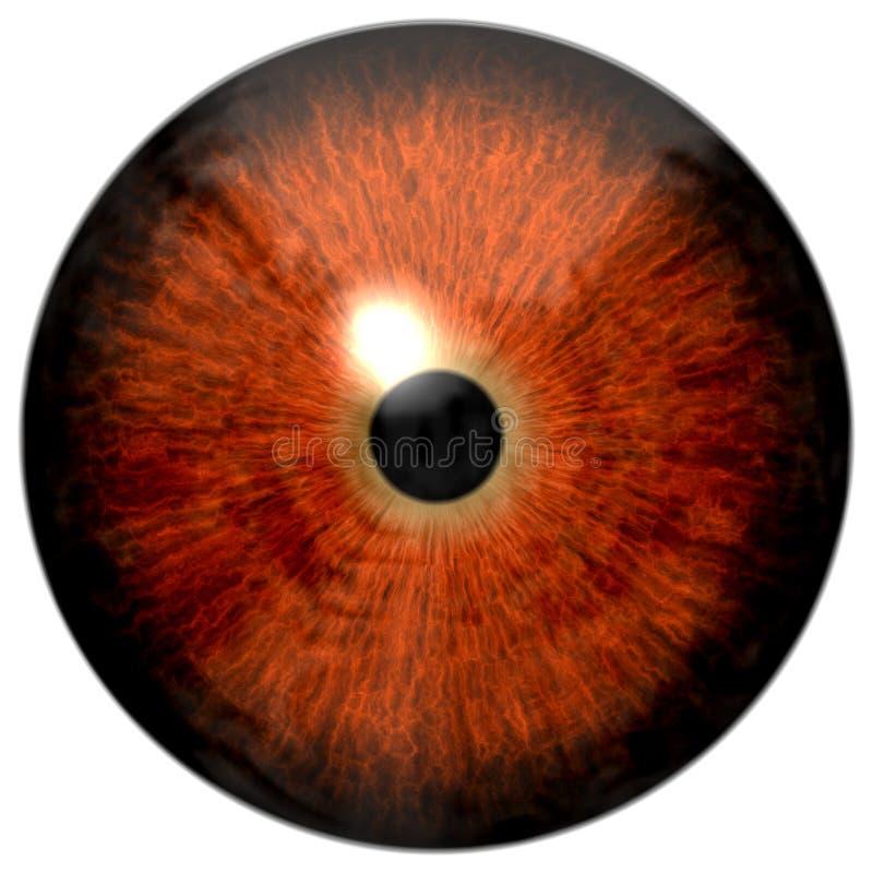 Czerwona oko tekstura z białym tłem ilustracja wektor