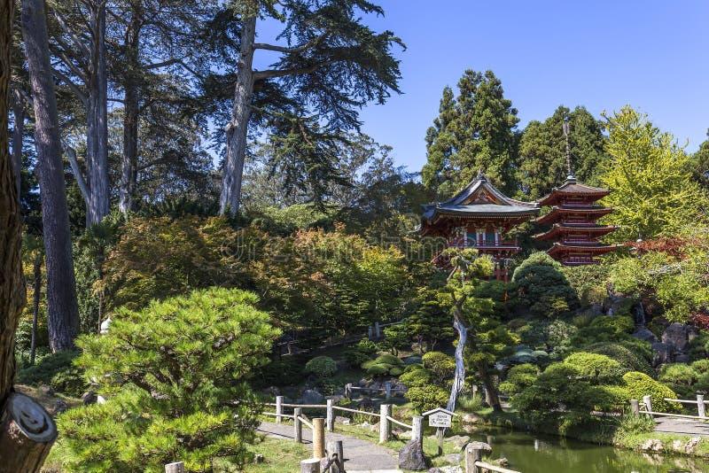Czerwona pagoda i drzewa w japończyku uprawiamy ogródek obraz stock