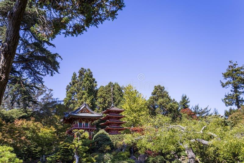 Czerwona pagoda i drzewa w japończyku uprawiamy ogródek zdjęcie royalty free