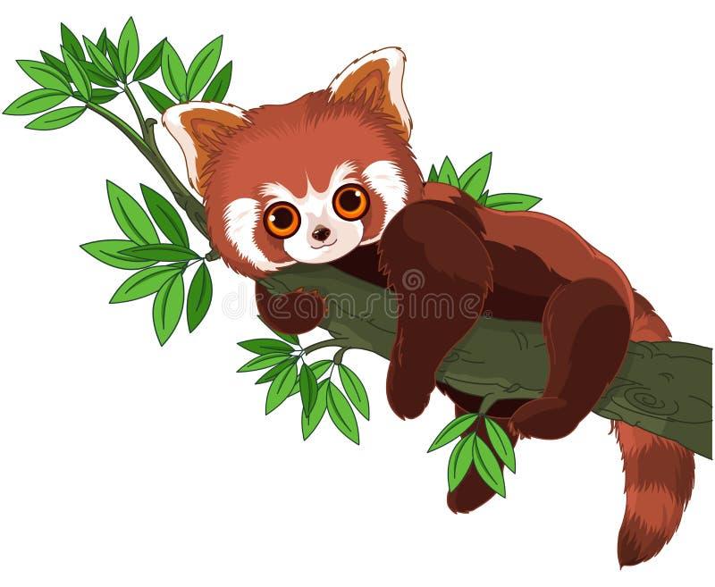 Czerwona panda royalty ilustracja