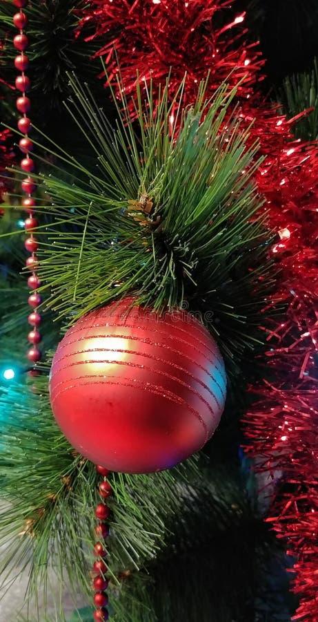 Czerwona piłka na Cristmas drzewie fotografia royalty free