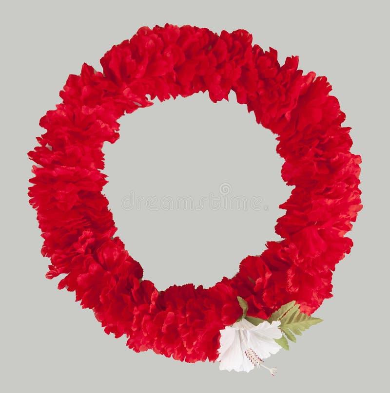 Czerwona poślubnik girlanda, Hawaje poślubnika girlanda/Odizolowywał biel fotografia royalty free