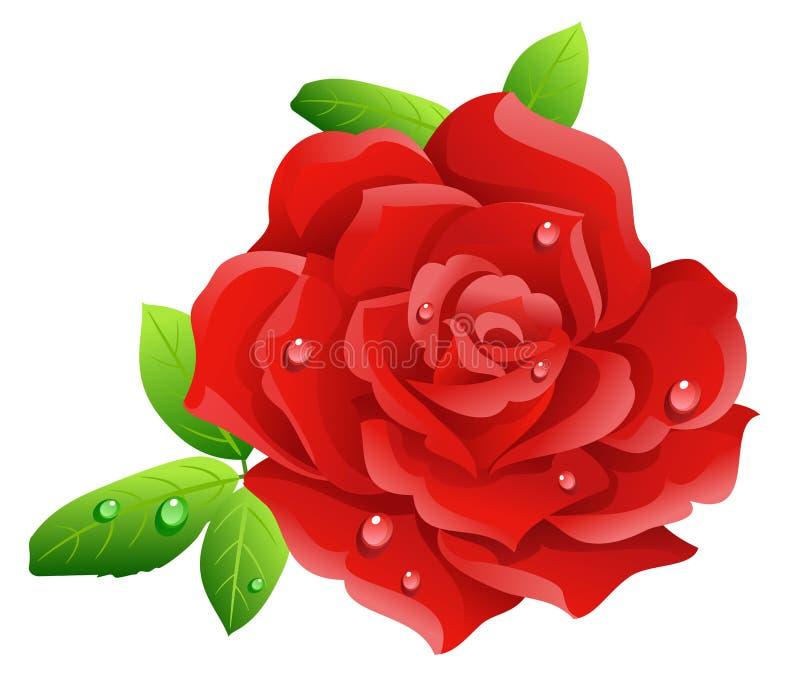 czerwona róża royalty ilustracja