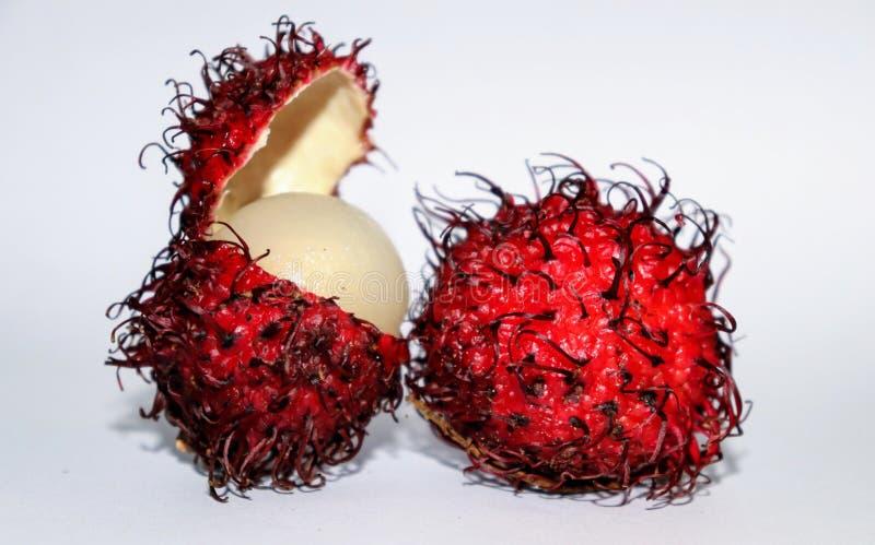 Czerwona rampton owoc z jeden otwartą owoc obraz royalty free