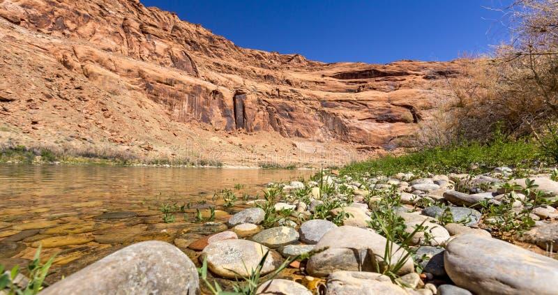 czerwona rzeka zdjęcie royalty free