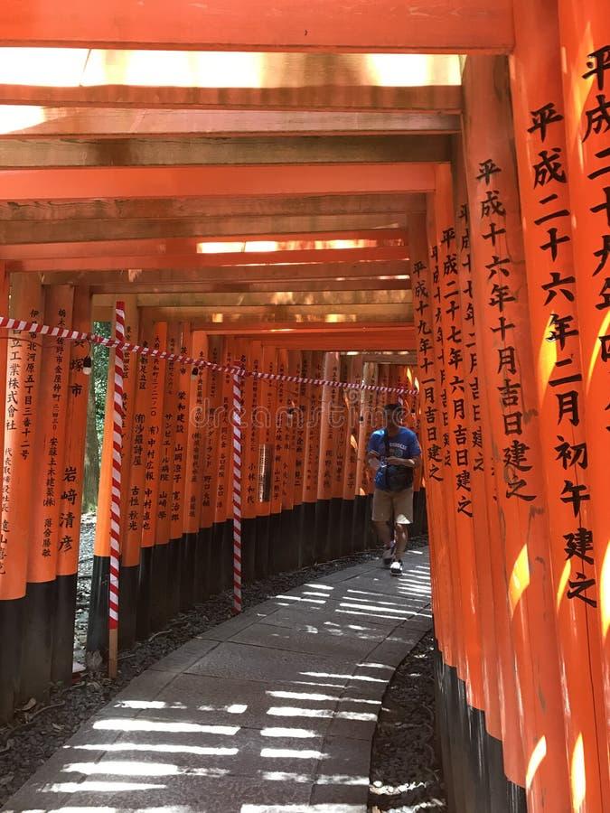 Czerwona tori świątynia Kyoto obrazy royalty free