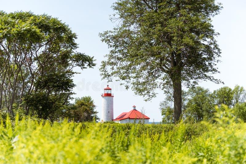 Czerwona zadaszająca latarnia morska obramiająca drzewami obrazy stock