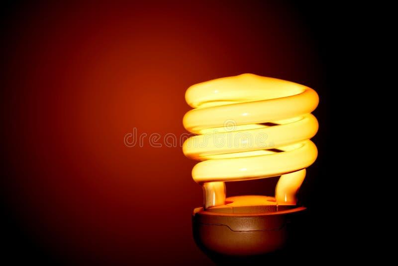 Czerwone światło żarówka. zdjęcia stock