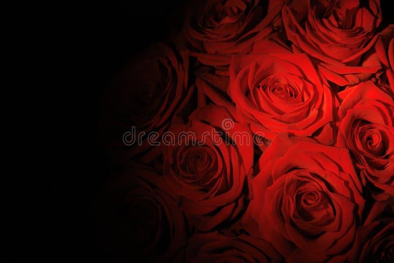 czerwone. ilustracji
